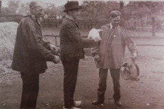 anno-1929-06